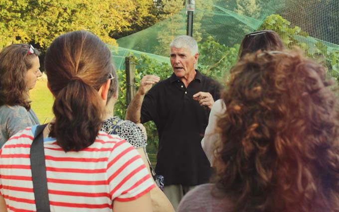 Willow Spring Vineyards Tour
